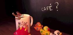 Café ?