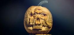 Pumpkin Lo