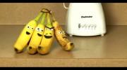 Banana Spl